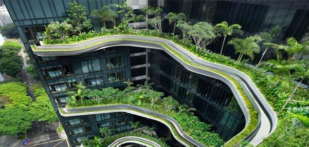 سفری رویایی به باغ آسمانی در سنگاپور