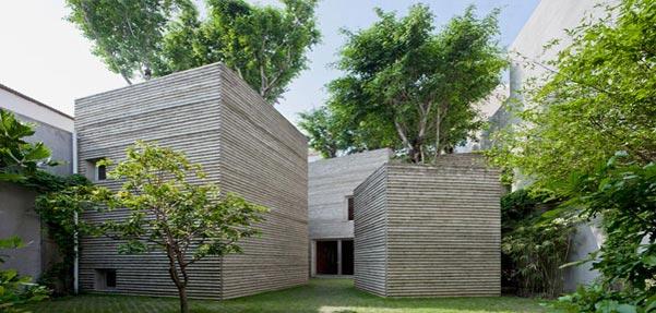 خانه ای برای درختان / ویتنام