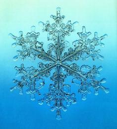 snowflakebl