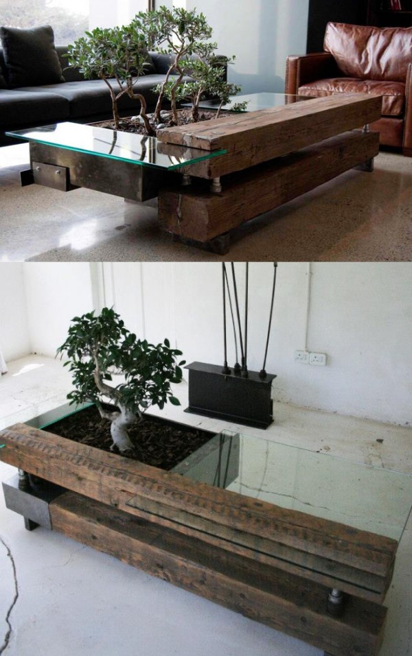 bonsai-coffee-table-600x956