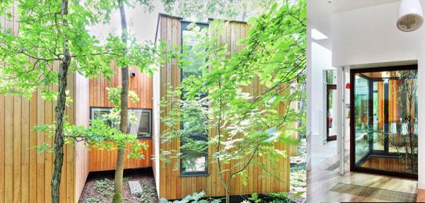 خانه ای میان درختان در حومه ورشو