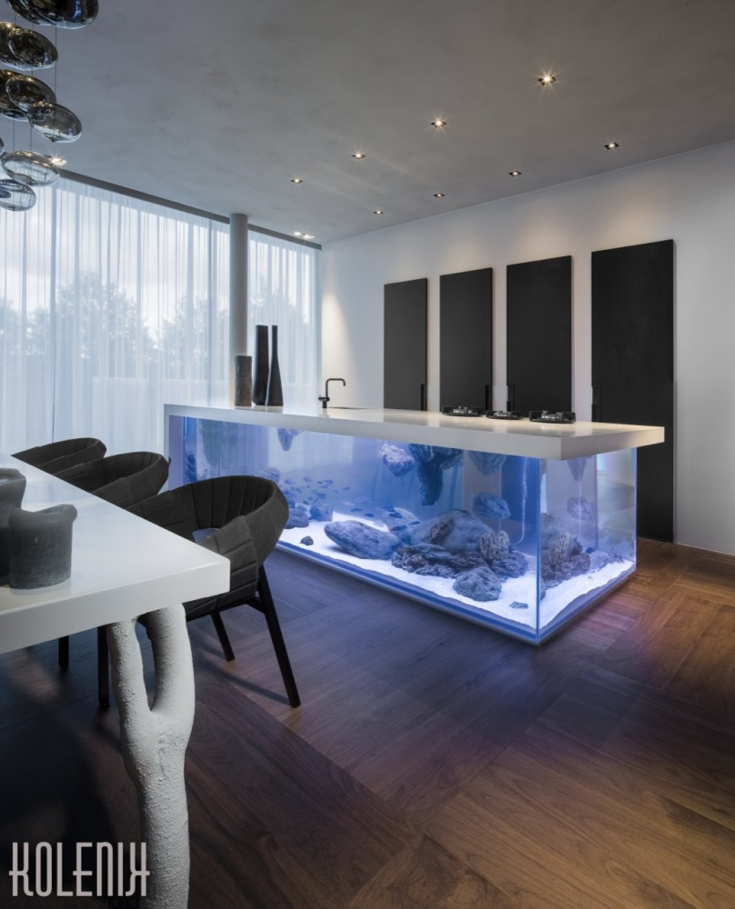 dutch-kitchen-incorporates-elegant-aquarium-_ocean_kitchen_design_aquarium_a3-kolenik-666x1000 (3)