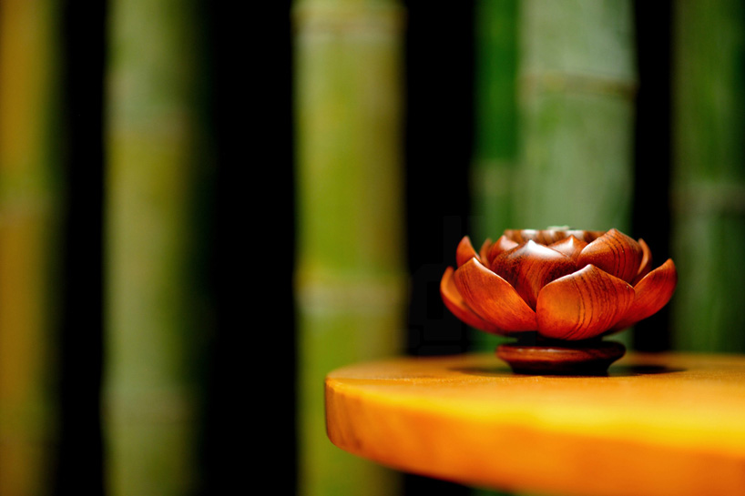minax-lotus-and-bamboo-tea-room-china-designboom-06