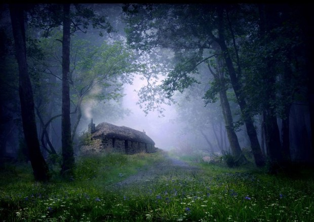 tiny-house-fairytale-nature-landscape-photography-19__880-620x438