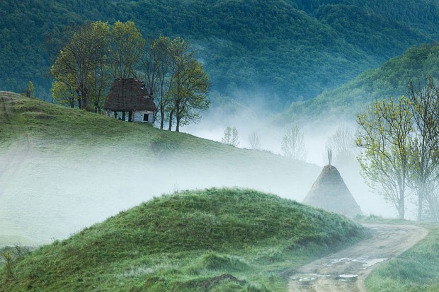 tiny-house-fairytale-nature-landscape-photography-20__880-620x413