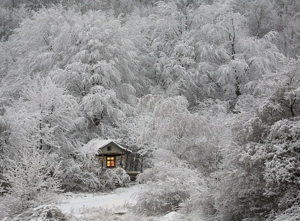 tiny-house-fairytale-nature-landscape-photography-25__880-620x456