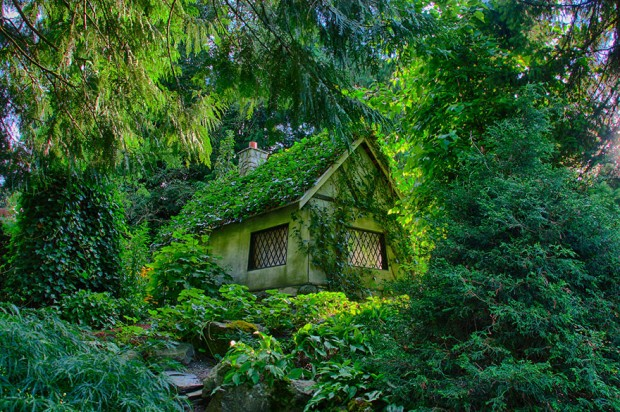 tiny-house-fairytale-nature-landscape-photography-28__880-620x412