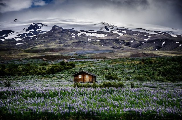 tiny-house-fairytale-nature-landscape-photography-35__880-620x411