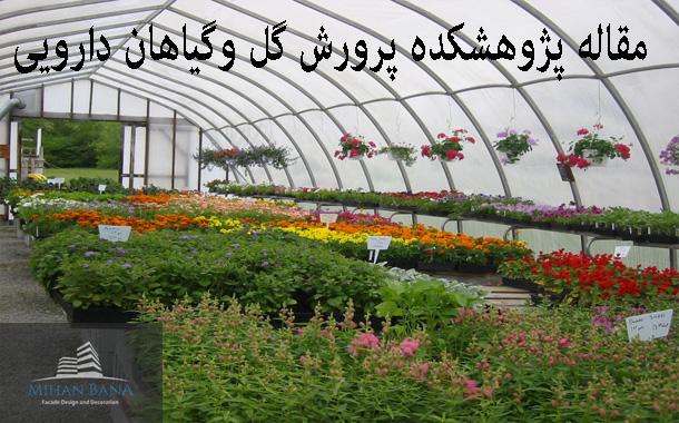 مقاله پایان نامه پرورش گل و گیاهان دارویی
