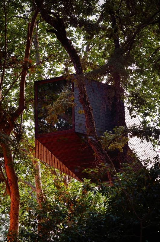 52448fcae8e44e67bf000155_tree-snake-houses-lu-s-rebelo-de-andrade-tiago-rebelo-de-andrade_tree_snake_house_2094-530x800