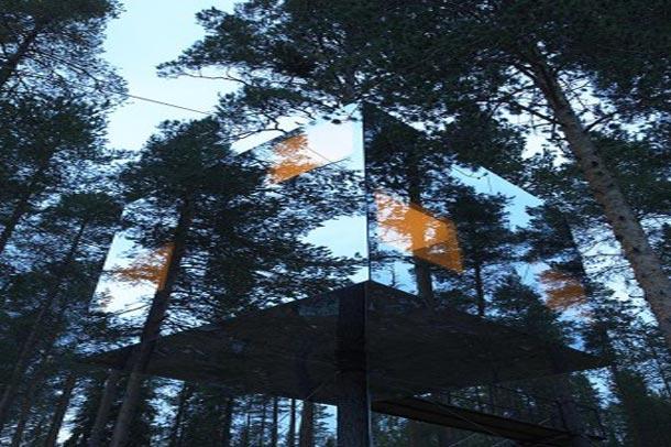 آرامشی دلپذیر در خانه های درختی