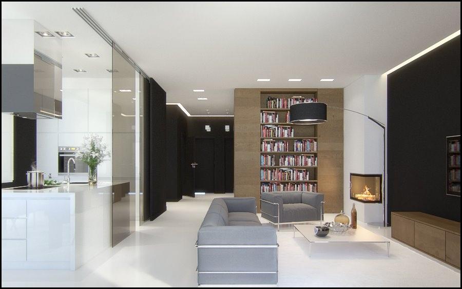 Black-brown-gray-white-living-area