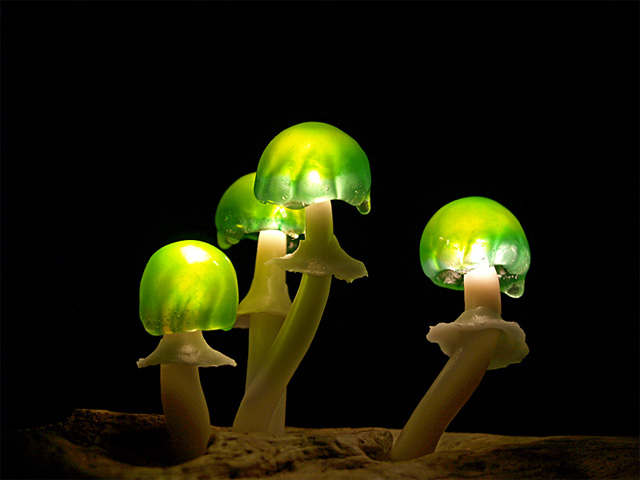 LED-mushrooms-13