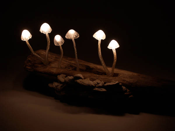 LED-mushrooms-2