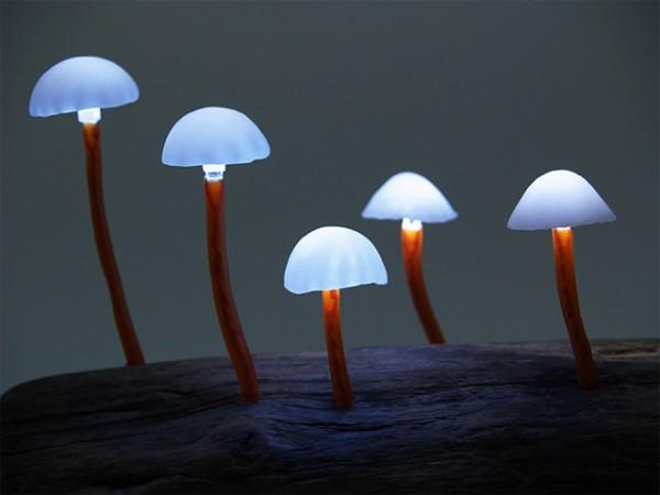 mushroom-1-600x450