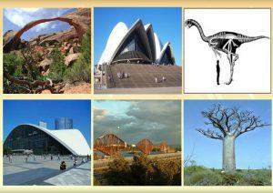 آموزه هایی ازسازه های طبیعی ، درس هایی برای معماران