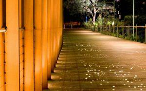 طرح زیبای پردیس دانشگاهی سیدنی، برنده مسابقه طراحی بین المللی!