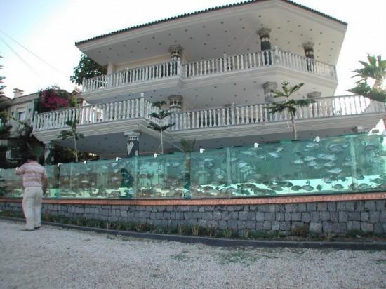 aquarium-fence-1