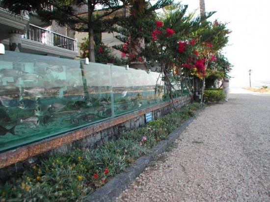 aquarium-fence-3