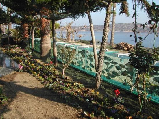 aquarium-fence-5