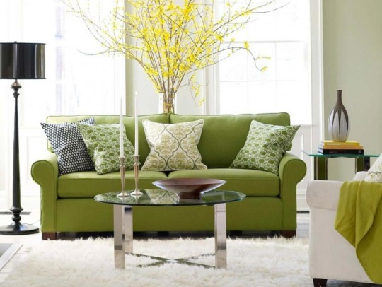 minimalist-green-living-room-design-with-nature-elements-ideas