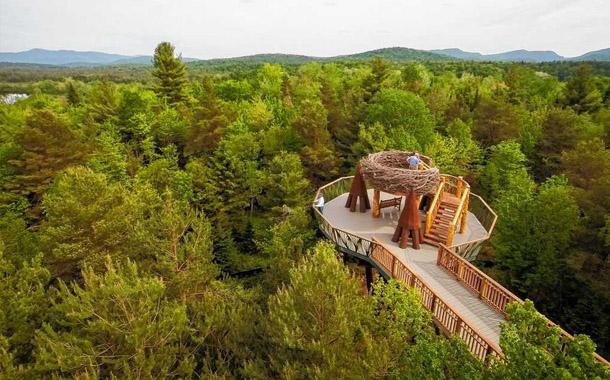 طراحی پلی هیجان انگیز بر فراز جنگل های ملی نیویورک!