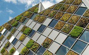 طراحی خلاقانه نما در بلژیک با استفاده از باکسهای سبز!