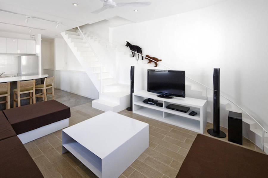 Staircase-Designed-for-Small-Pets1-900x599