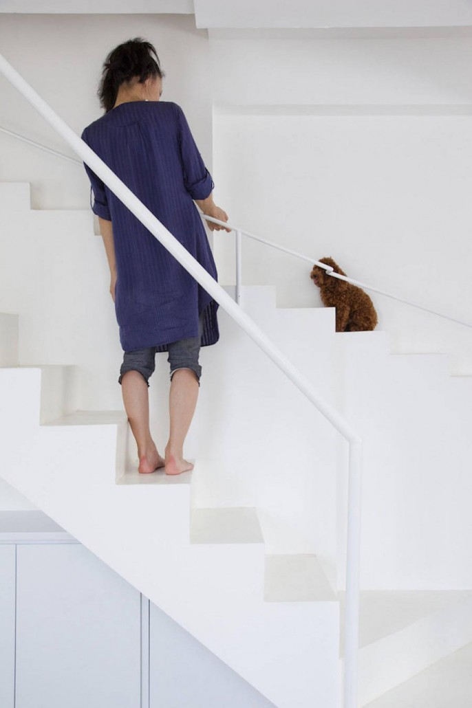 Staircase-Designed-for-Small-Pets3-900x1351