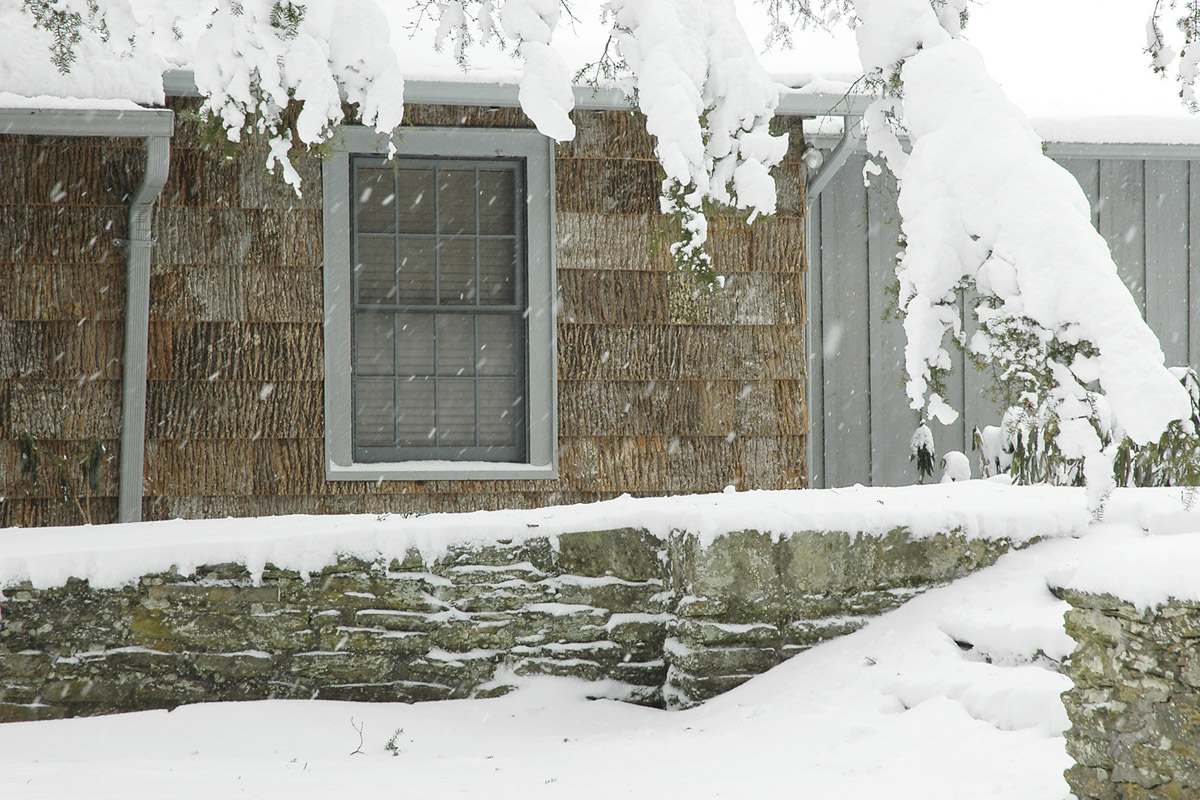 Bark-For-exteriors