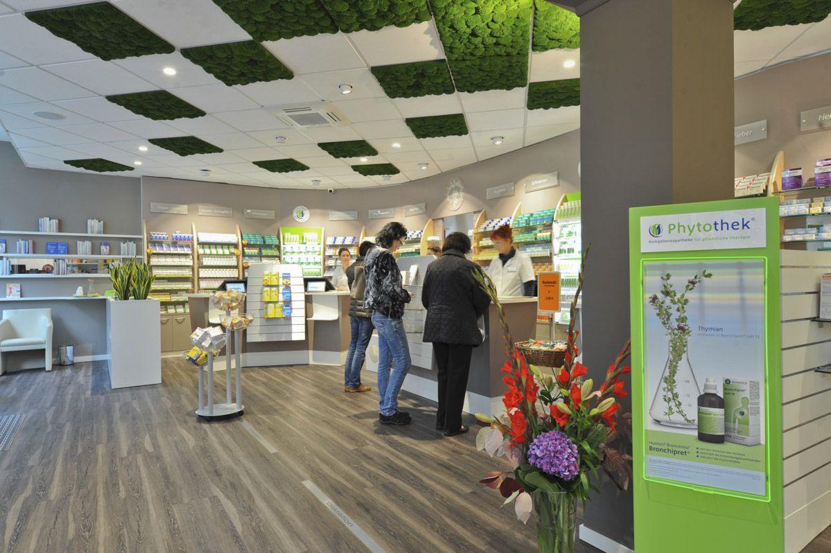 Pharmacy-Ceiling-Moss
