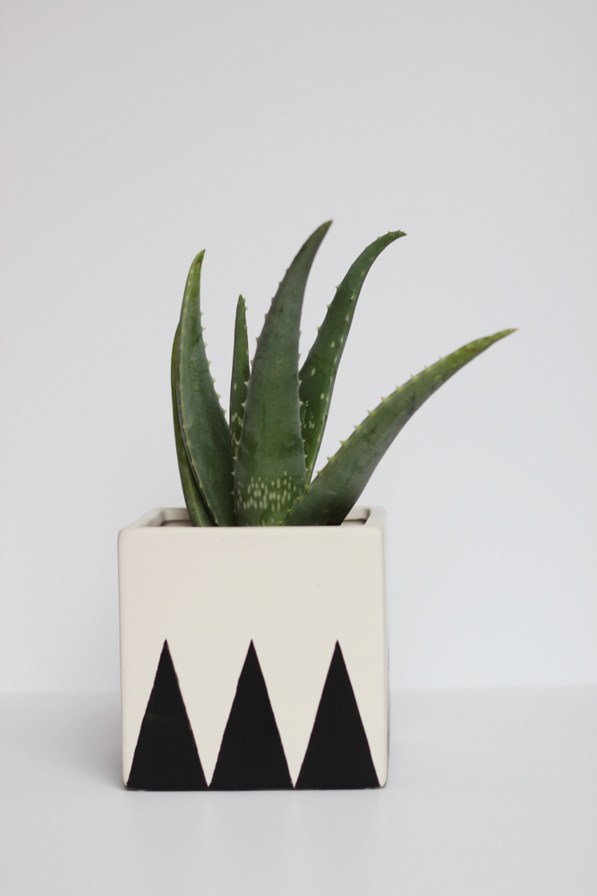 black-and-white-cube-planter