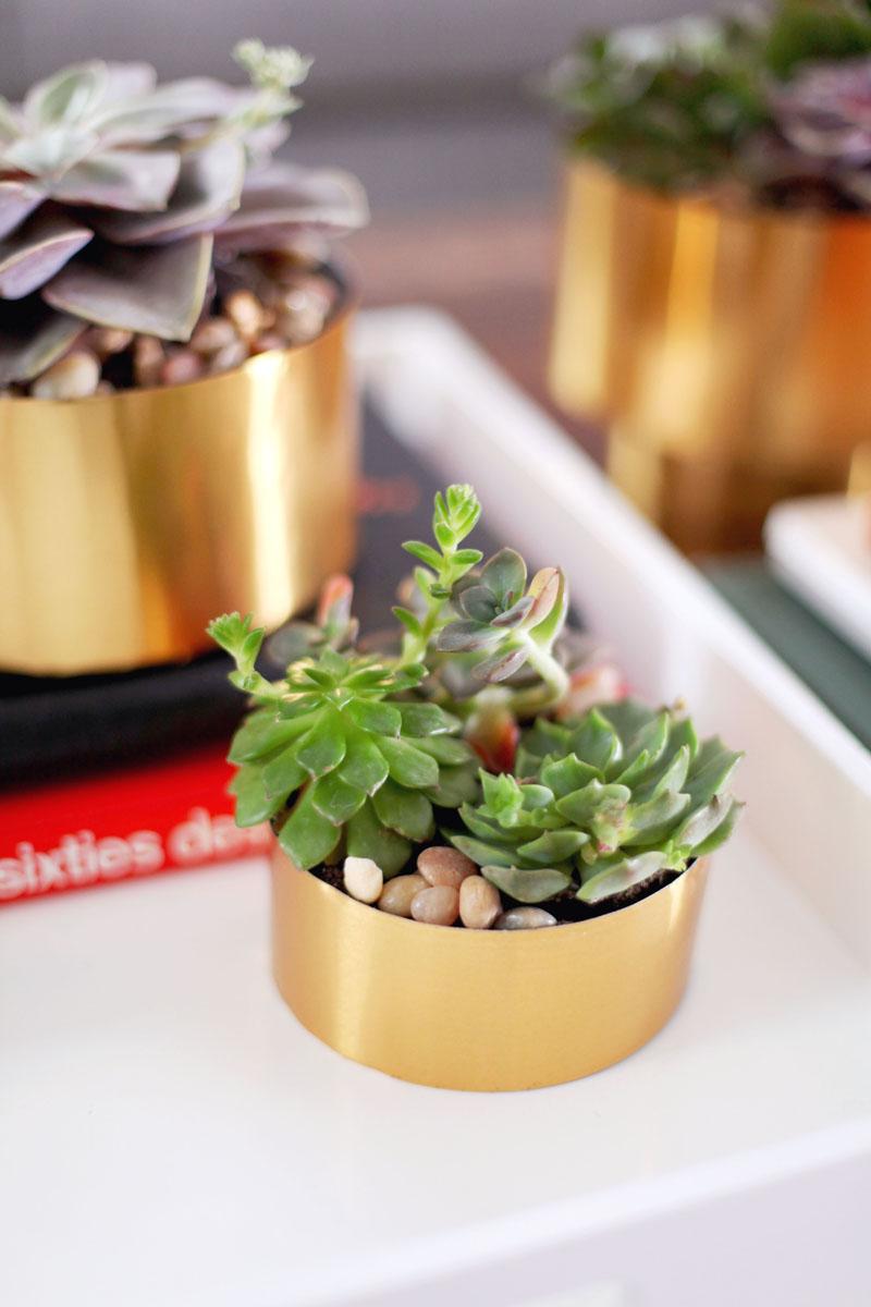 brass-succulent-planter