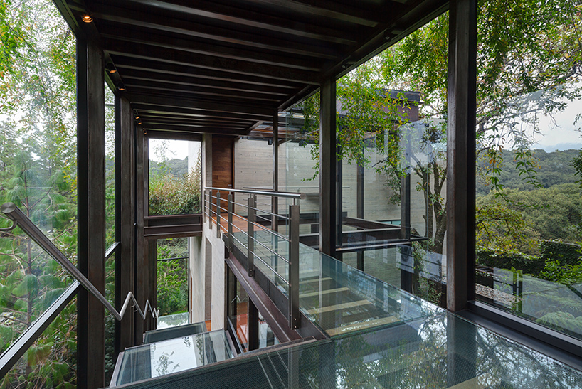 grupo-arquitectura-la-casa-en-el-bosque-mexico-city-house-in-the-forest-designboom-04