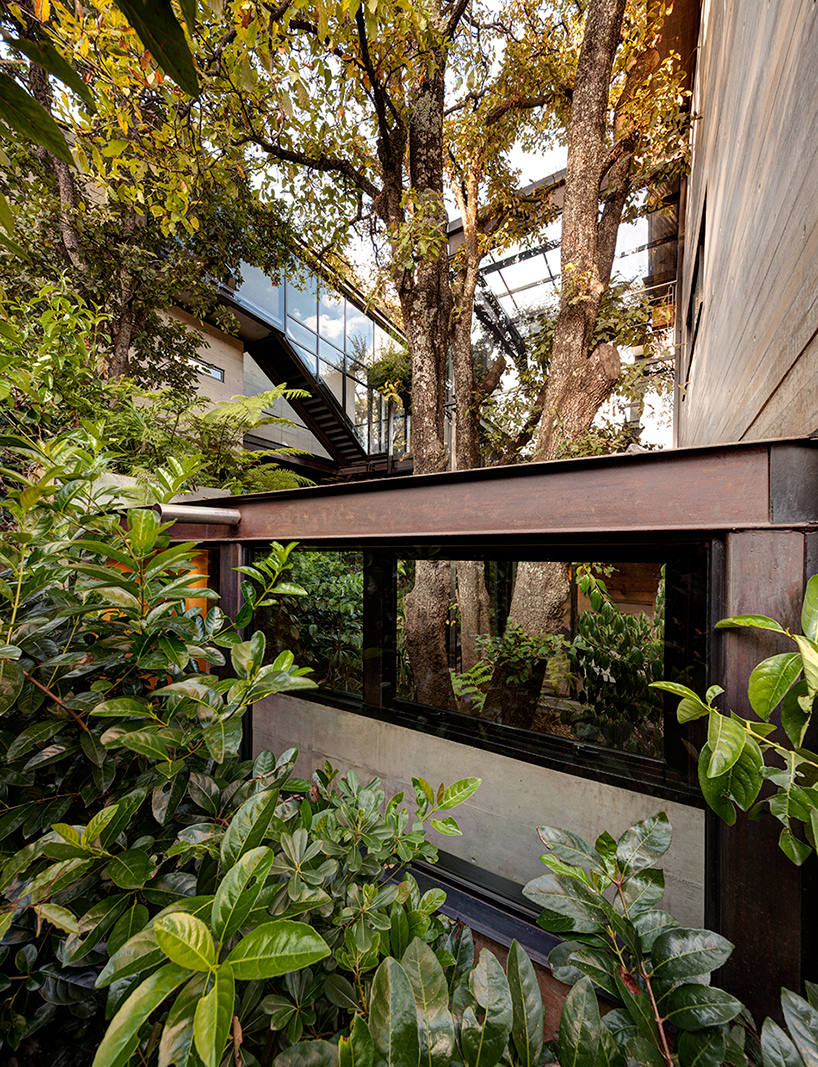 grupo-arquitectura-la-casa-en-el-bosque-mexico-city-house-in-the-forest-designboom-12