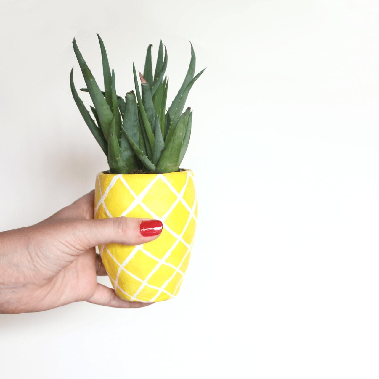 pineapple-planter-diy