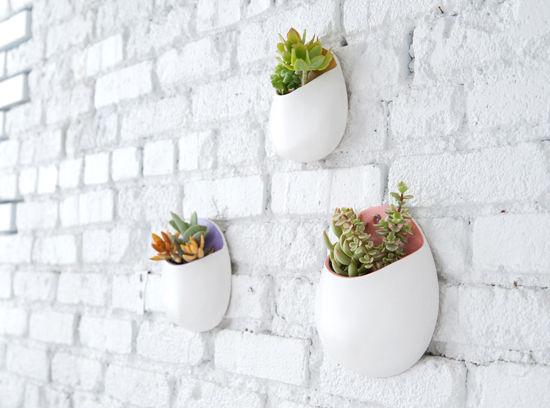 plant-wall-pockets