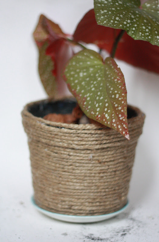 rope-covered-planter