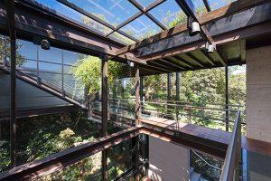 خانه ای شیشه ای در دل جنگل ; رویایی که واقعیت شد