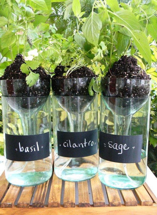 wine-bottle-self-watering-planter
