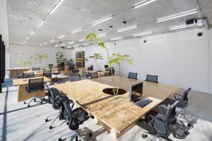 طراحی داخلی فروشگاه و دفتر در شهر توکیو با بهره گیری از معماری سبز