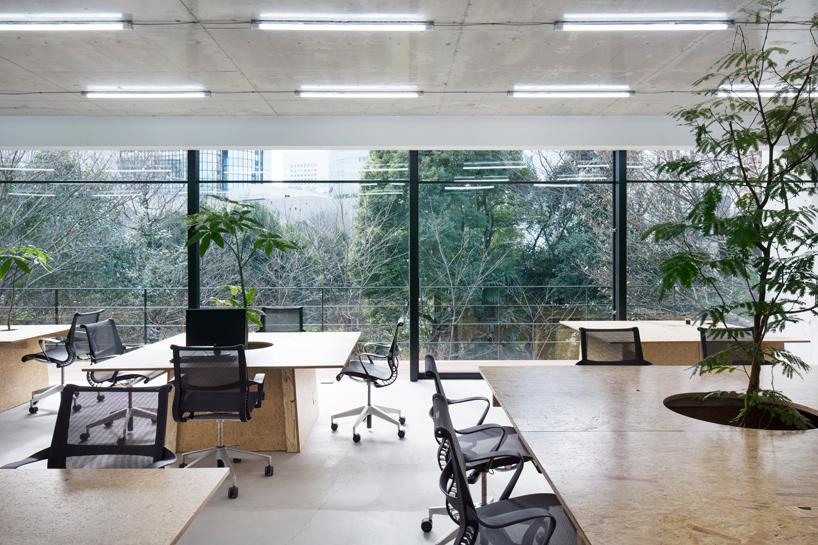 schemata-architects-nakagawa-masashichi-shoten-omotesando-office-tokyo-designboom-02