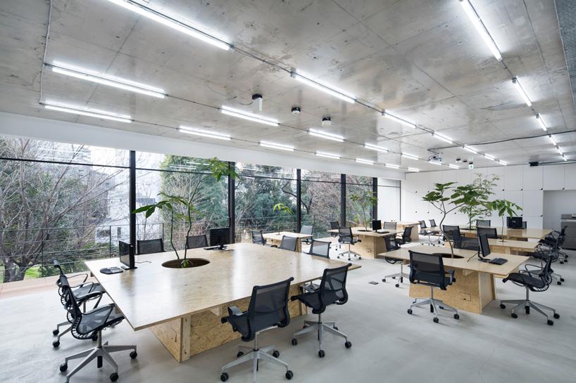 schemata-architects-nakagawa-masashichi-shoten-omotesando-office-tokyo-designboom-03