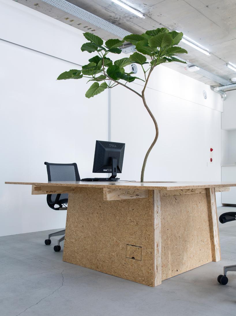 schemata-architects-nakagawa-masashichi-shoten-omotesando-office-tokyo-designboom-05