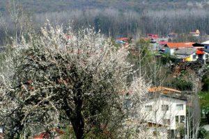 پاورپوینت روستای جوربند در شهرستان نور